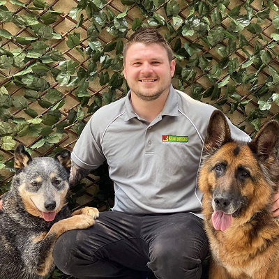 expert-dog-trainer-illawarra