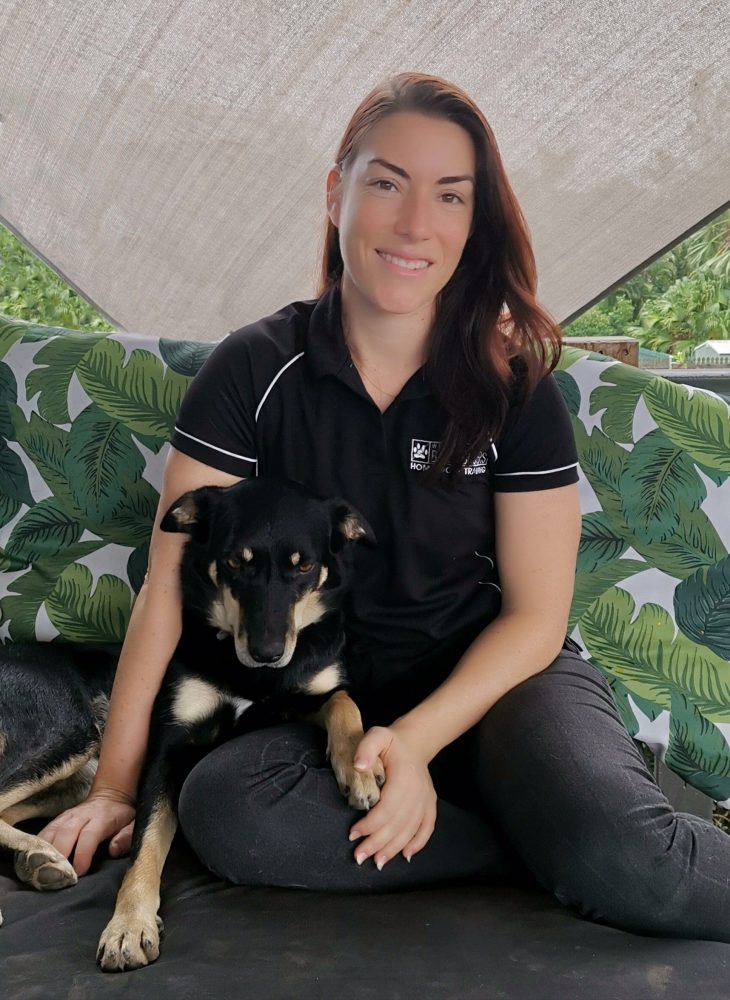 positive-dog-training-townsville-barkbusters